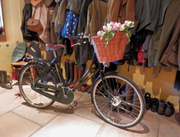 My new bicycle, posing beautifully in the hall.