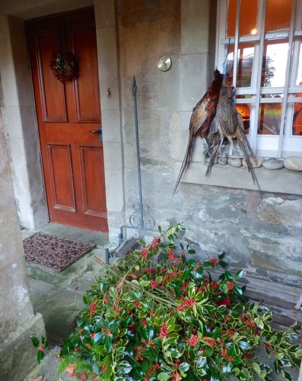 Piles of holly ready at the door (and pheasants for the pot).